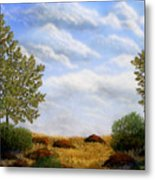 Foothills Afternoon Metal Print