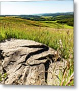 Foothills View Metal Print