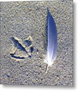 Footprint And Feather Metal Print