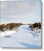 Footprints In The Snow Iv Metal Print
