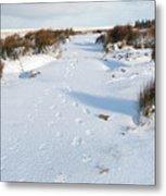 Footprints In The Snow V Metal Print