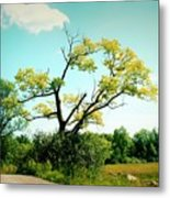 For A Moment - 02a Metal Print
