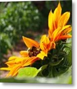 For The Honey Comb Metal Print