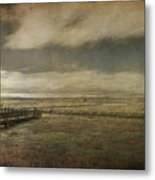 For The Lonely Souls Metal Print by Laurie Search