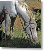 For The Love Of His Horse Metal Print