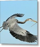 For The Nest Metal Print
