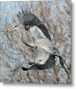 For The Nest Too Metal Print