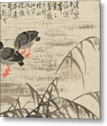Foraging In The Wild Goose River Metal Print