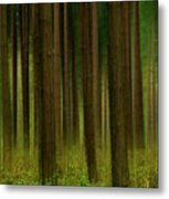 Forest Abstract01 Metal Print