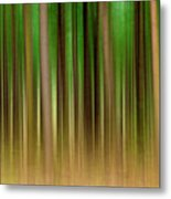 Forest Abstract04 Metal Print by Svetlana Sewell