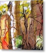 Forest And Stream Metal Print