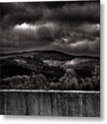 Forest Behind The Wall Metal Print