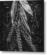 Forest Botanicals In Black And White Metal Print