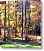 Forest Deck Metal Print
