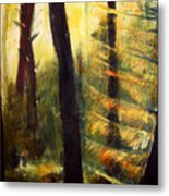 Forest Evening Metal Print