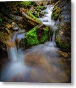 Forest Flow Metal Print