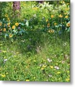 Forest Flowers Landscape Metal Print