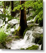 Forest Flows Metal Print