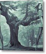 Forest Harmony Metal Print