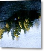 Forest Hidden In The Ice Metal Print
