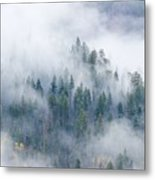 Forest In The Clouds Metal Print