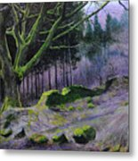 Forest In Wales Metal Print