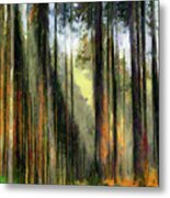 Forest Light Metal Print