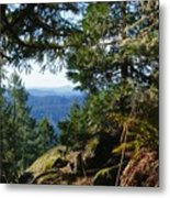 Forest Lookout Metal Print