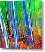 Forest Magic Metal Print