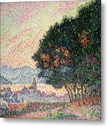 Forest Near St Tropez Metal Print