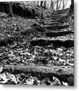 Forest Of Illusion Metal Print
