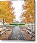 Forest Park Benches Metal Print