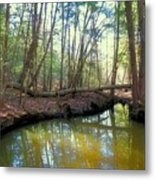 Forest Pool Metal Print