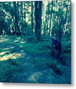 Forest Ride Metal Print