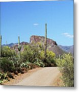 Forest Road 172 Tonto National Forest Metal Print