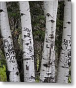 Forest Signpost Metal Print