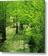 Forest So Green Metal Print