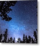 Forest Star Gazing An Astronomy Delight Metal Print