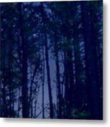Forest Starlight Metal Print