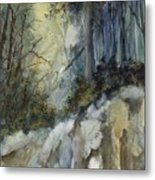 Forest Unknown Metal Print