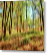 Forest Vision Metal Print