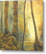 Forest Wonderment Metal Print