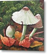 Forest Wonders Metal Print
