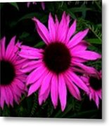 forget me not,because I'm not perfect Metal Print