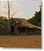Forgotten Dreams Metal Print