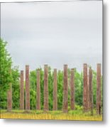 Forks Of Cypress Metal Print