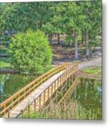 Forrest Lakes Metal Print