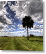 Fort Moultrie Palm  Metal Print