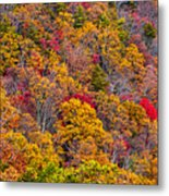 Fort Mountain State Park Cool Springs Overlook Metal Print