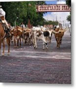 Fort Worth Cattle Drive Metal Print
